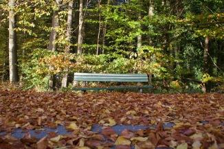 Herbststimmung_2903