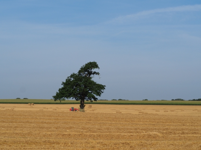 Strohernte auf dem großen Feld