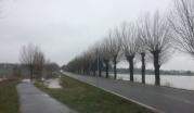 Sturmfolgen - Überflutung der Wege