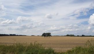 Feldblick mit traumhaften Wolken