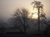 Sonnenaufgang hinter Nebel