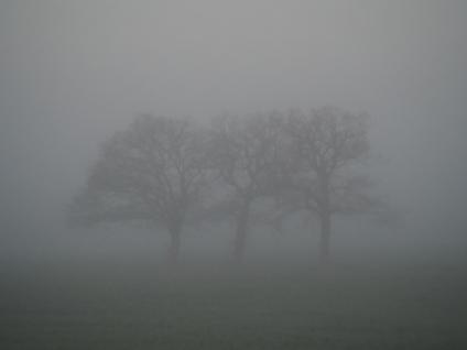 Die 3 Grazien umspielt vom Nebel