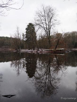 Manhagener Teich