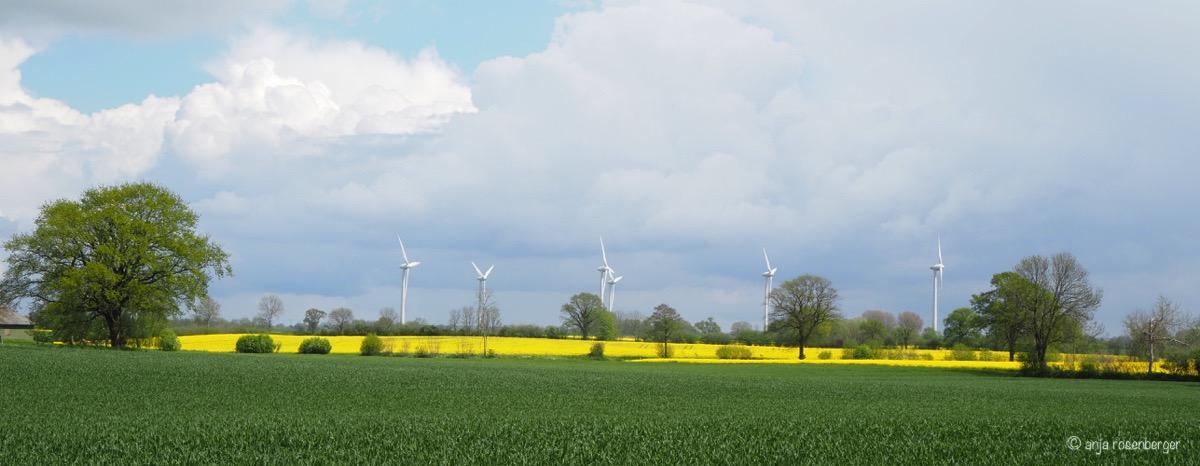 Norddeutsche Landschaft mit Raps und Windrädern